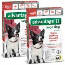 12 MONTH Advantage II Flea Control Large Dog (for Dogs 21-55 lbs.)