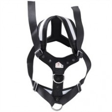 AllSafe Harness - Large